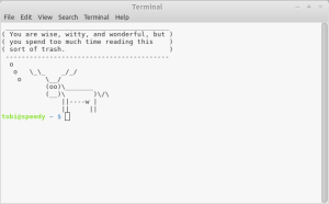 funny terminal